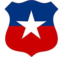 Roundel of the Chilean Air Force  Photographic Print