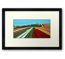 Tulip Farm, Table Cape Framed Print