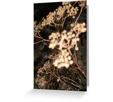 Flower of death Greeting Card