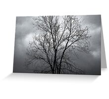 Winter Moods 8 Greeting Card