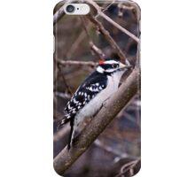 Downey woodpecker iPhone Case/Skin