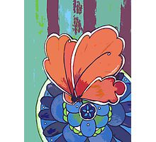 apricot butterfly Photographic Print