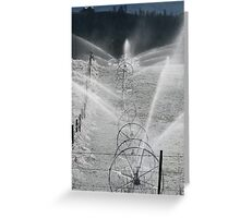 Frosty Sprinklers  Greeting Card