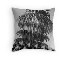 Pineapple Fountain #3, Charleston, SC Throw Pillow
