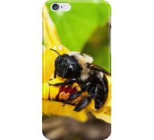 Gimme Some Pollen iPhone Case/Skin