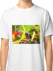 Gimme Some Pollen Classic T-Shirt