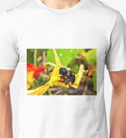 Gimme Some Pollen Unisex T-Shirt
