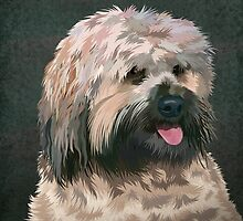 Tibetan terrier by Carl Conway
