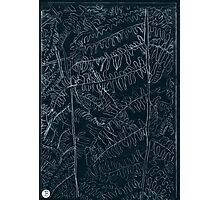 Woodland ferns acrylic plate etching, white ink on black paper Photographic Print