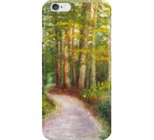 Bavarian Autumn Evening iPhone Case/Skin