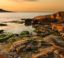 Rocky Coast by Kofoed