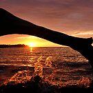 Waikaloa Sunset by Randy Richards