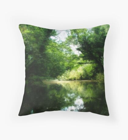 Mythical view of a lake with reflection of trees Throw Pillow