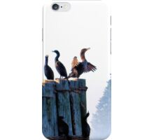 Cormorants on a foggy morning. iPhone Case/Skin