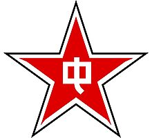 Roundel of the People's Liberation Army Air Force, 1946-1949 Photographic Print