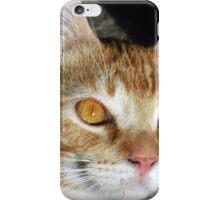 I love my Foundling iPhone Case/Skin