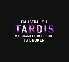 I'm Actually a TARDIS by Matt Gelfman