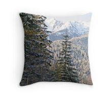 """""""Olympic Mountains Snow"""" Throw Pillow"""