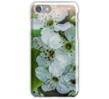 Blossom Time. iPhone Case/Skin