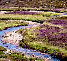 Winding Through the Heather by Marylou Badeaux