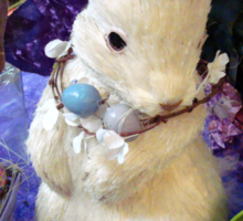 Time for the Easter Bunny Sticker