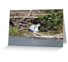 i'm going for a paddle! Greeting Card