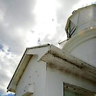 Lighthouse on Matiu-Somes Island by meryl