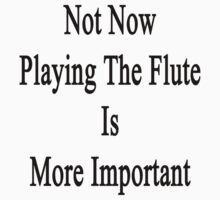 Not Now Playing The Flute Is More Important  by supernova23