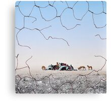 The Dingo Fence Canvas Print