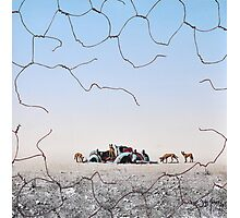 The Dingo Fence Photographic Print