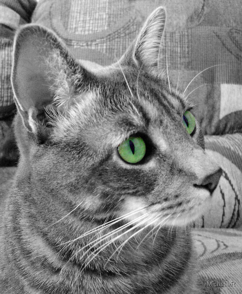Green Eyed Monster by MichelleR