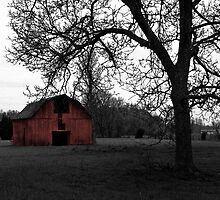 Intriguing Barn by Kevin D. Raney