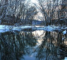 Allegheny River's Hogg Island Meets French Creek by Geno Rugh