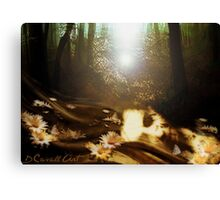 Back to the Earth Canvas Print