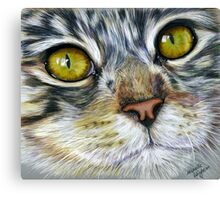 Blink Macro Cat Painting Canvas Print