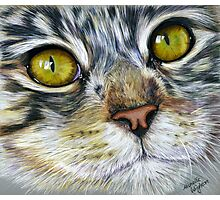 Blink Macro Cat Painting Photographic Print