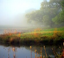Foggy Morning At The Mill Pond(usphoto) by madman4