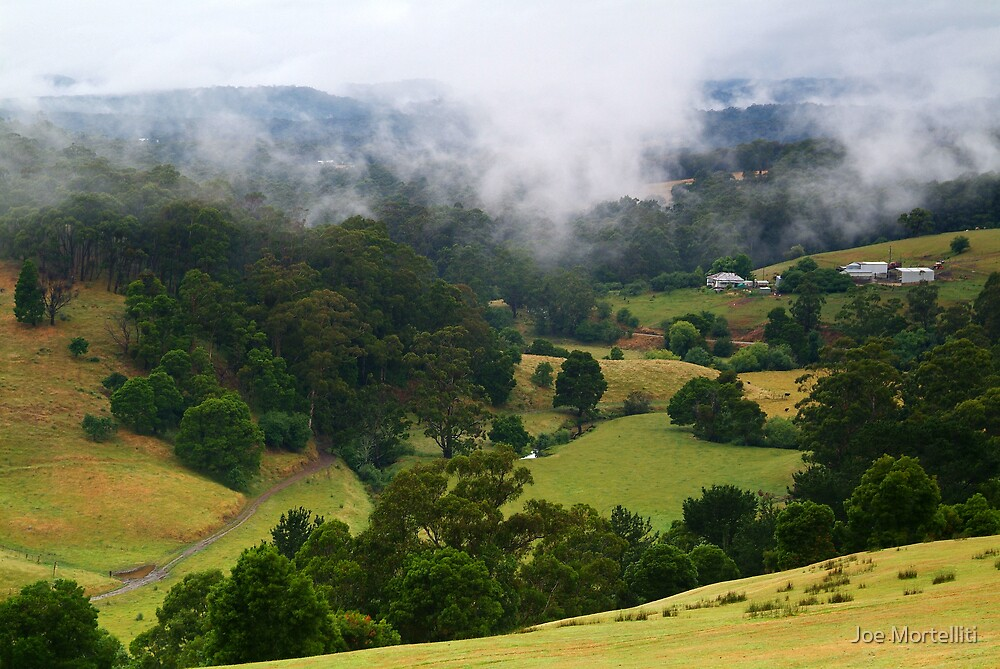 Otway Farmlands, Forrest  by Joe Mortelliti