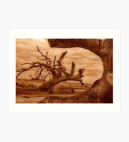 """""""Framed"""" Art Print"""