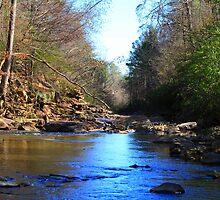 Patton Creek by Bradley Miller