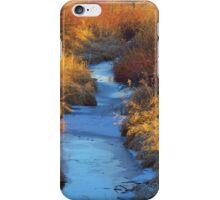 Down By the Creekbank iPhone Case/Skin