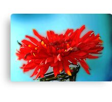 Red Flower in a Jar Canvas Print