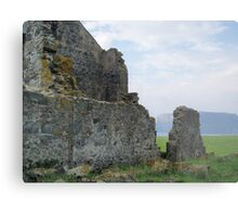 """ruins at Stanley with the """"Nut"""" (Circular Head) in background  Metal Print"""