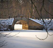Bridge over frozen water by Heather Thorsen