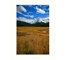 Gothic Valley, Colorado Art Print