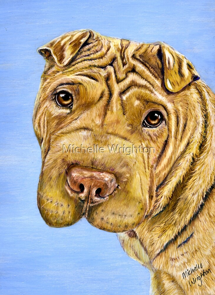 'Aspen' - Shar Pei by Michelle Wrighton