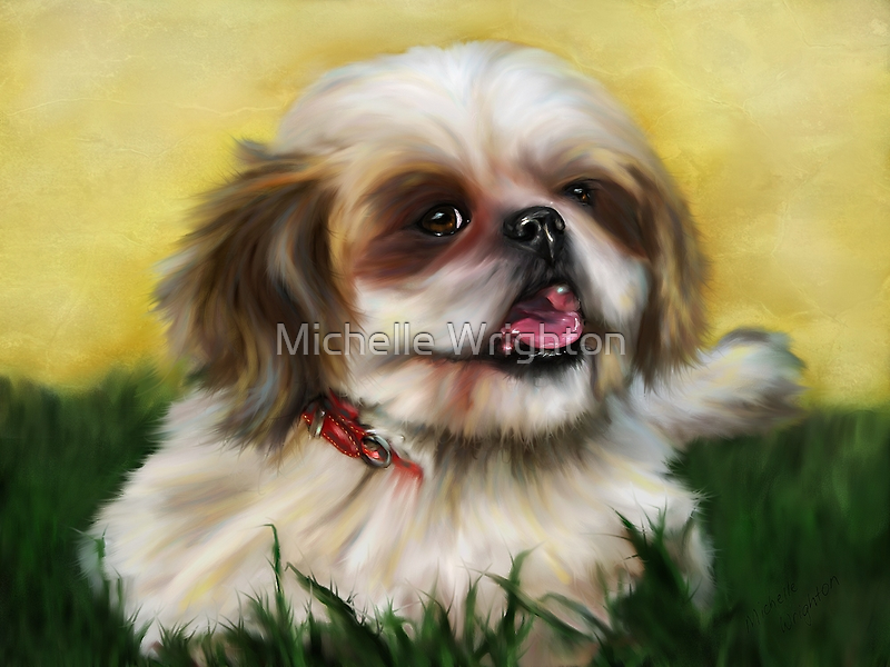 Sophie in the Sunshine by Michelle Wrighton