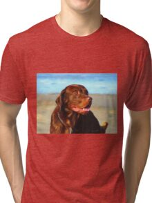 Bosco at the Beach Tri-blend T-Shirt
