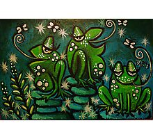 Three green frogs Photographic Print