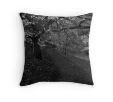 Old Garden Path Throw Pillow